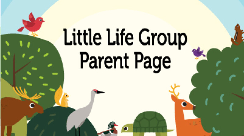 Little Life Groups